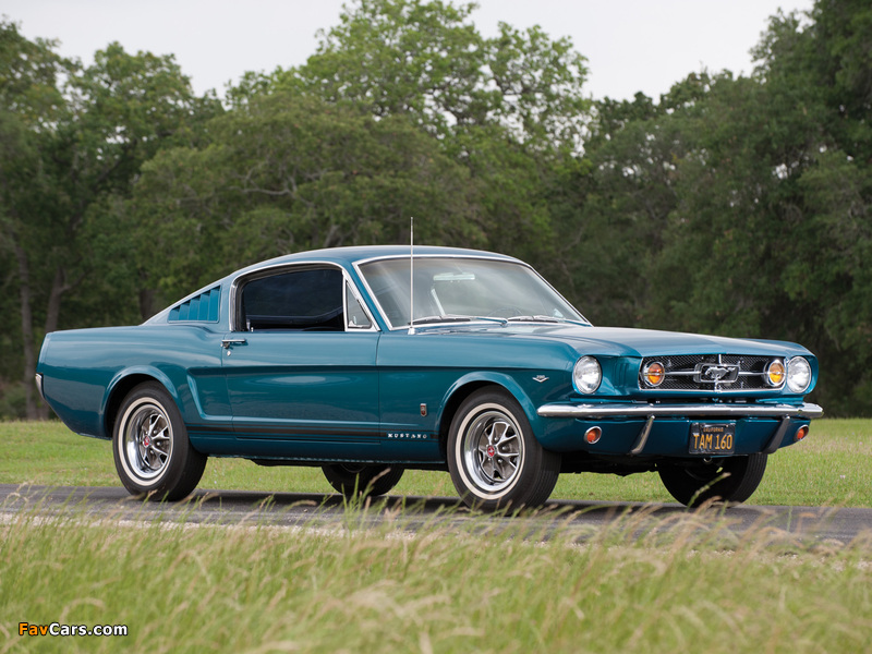 Mustang GT Fastback 1965 images (800 x 600)