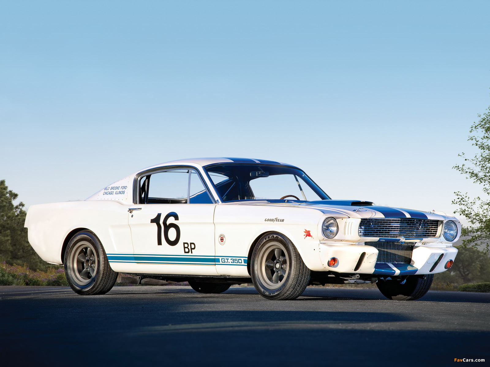 Shelby Gt350r 1965 Pictures 1600x1200