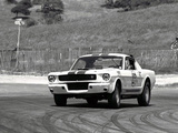 Shelby GT350R 1965 pictures