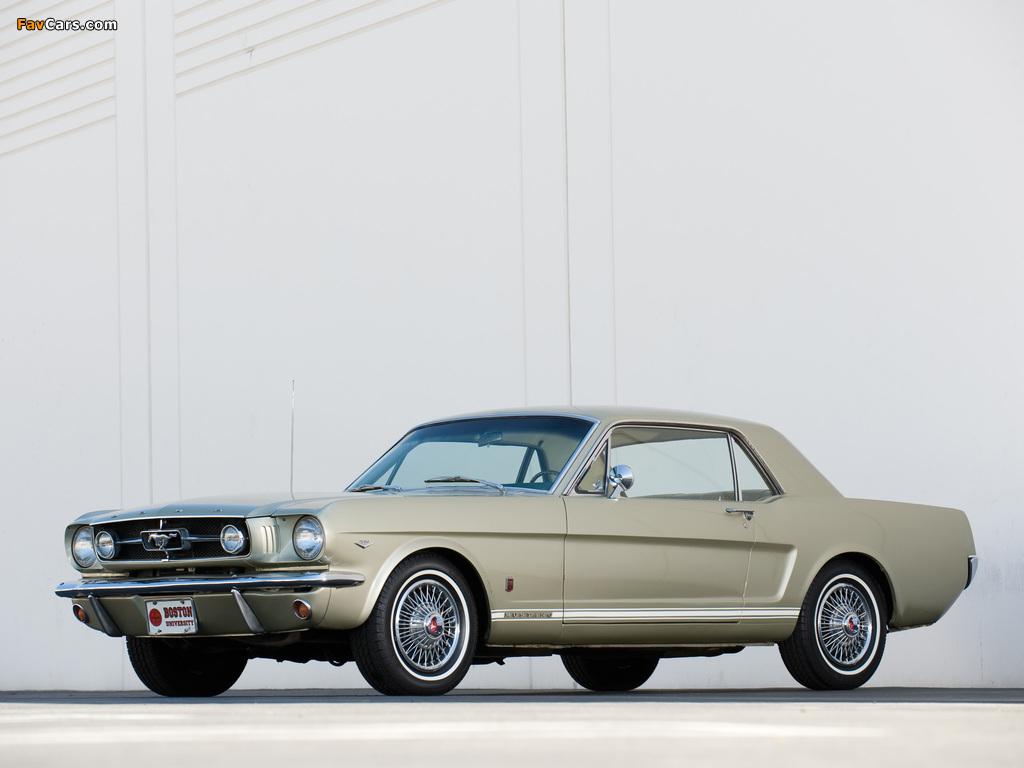 Mustang GT Coupe 1965 wallpapers (1024 x 768)