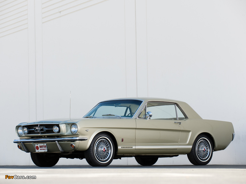 Mustang GT Coupe 1965 wallpapers (800 x 600)