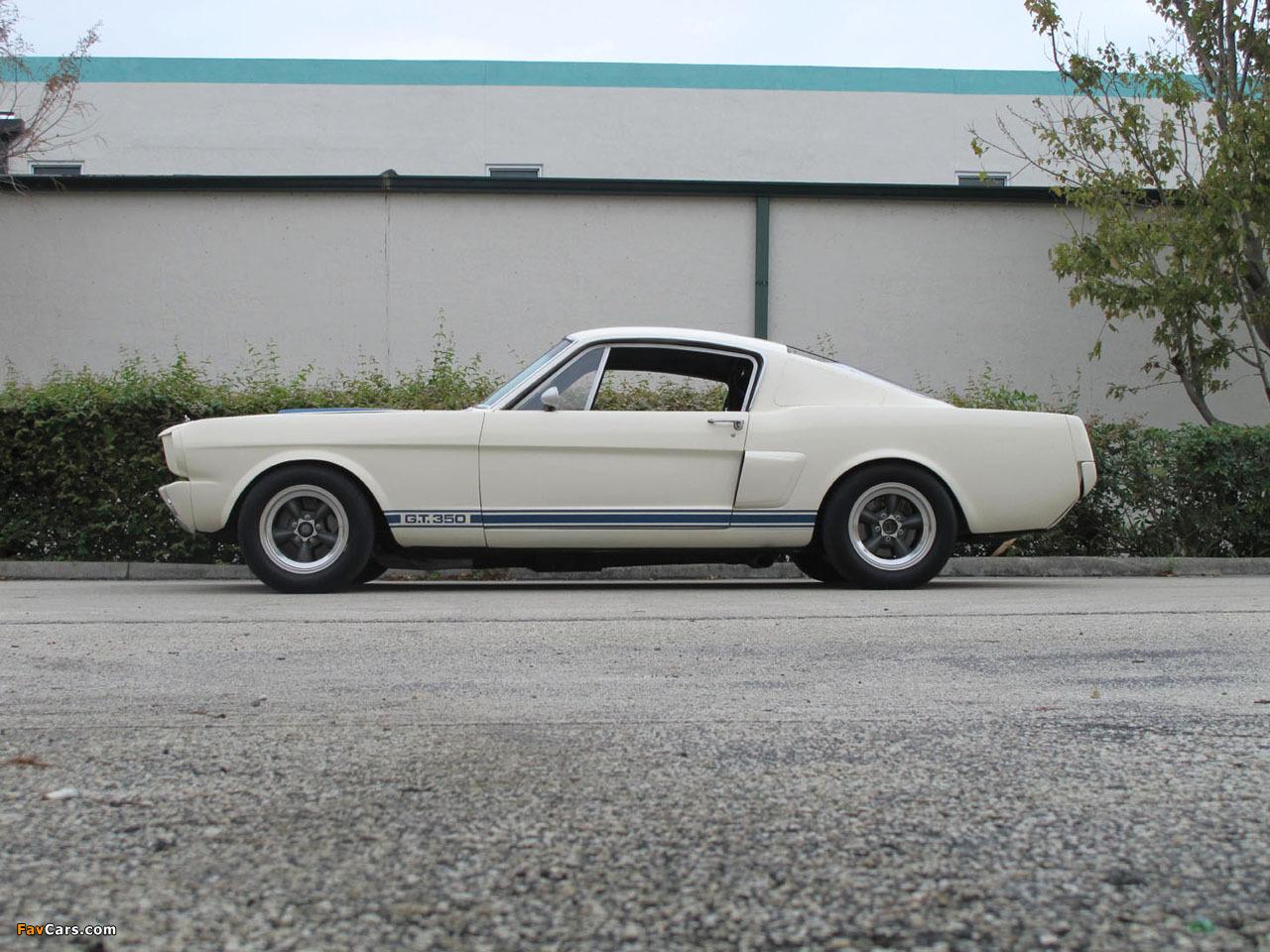 Shelby GT350R 1966 photos (1280 x 960)
