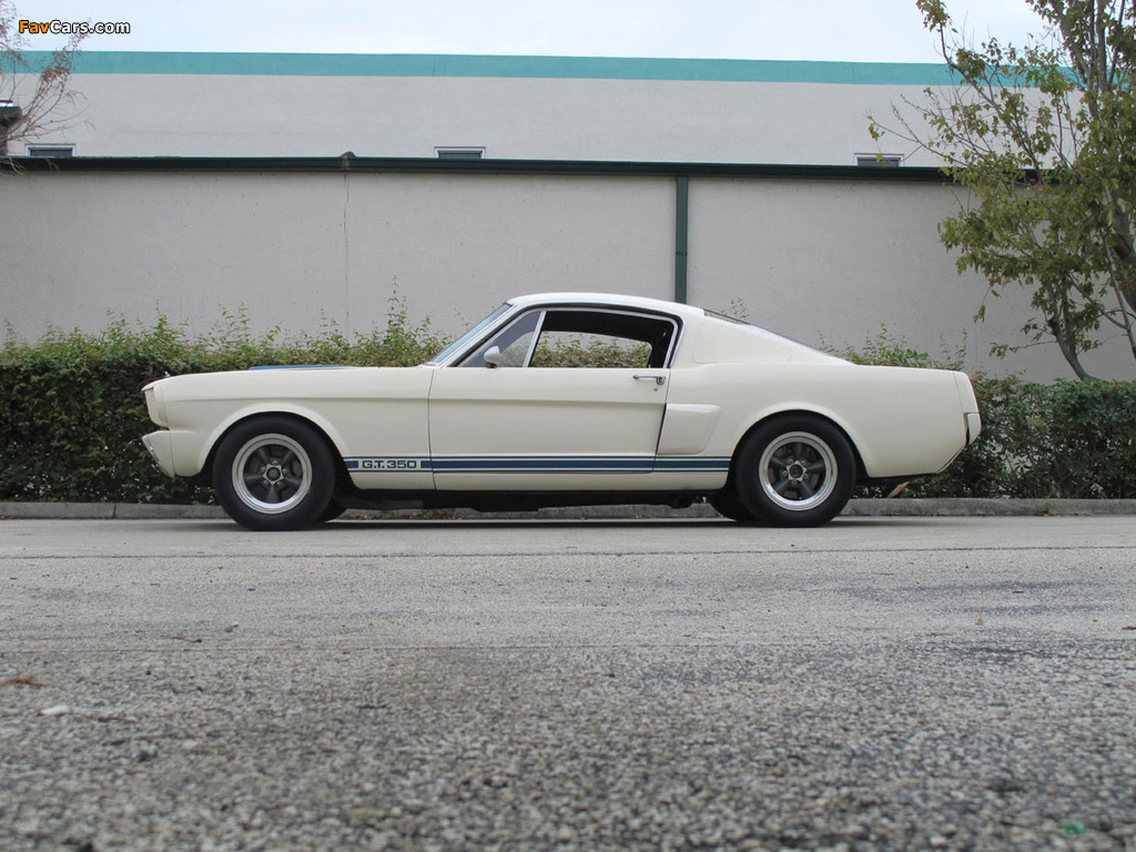 Original Mustang Shelby >> Shelby GT350R 1966 photos (1024x768)
