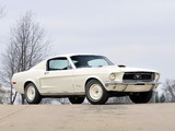 Mustang Lightweight 428/335 HP Tasca Car 1967 images