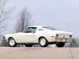 Mustang Lightweight 428/335 HP Tasca Car 1967 photos