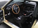 Mustang Coupe Race Car (65B) 1967 photos