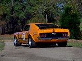 Ford Mustang Boss 302 Trans-Am Race Car 1970 images