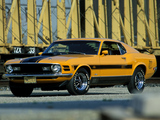 Mustang Mach 1 Twister Special 1970 images