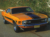 Mustang Mach 1 Twister Special 1970 wallpapers