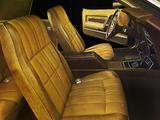 Mustang Grande Hardtop 1971 photos