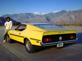 Mustang Boss 351 1971 photos