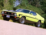 Mustang Boss 351 1971 pictures