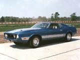 Mustang Mach 1 1973 photos