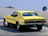 Mustang Coupe 1973 photos