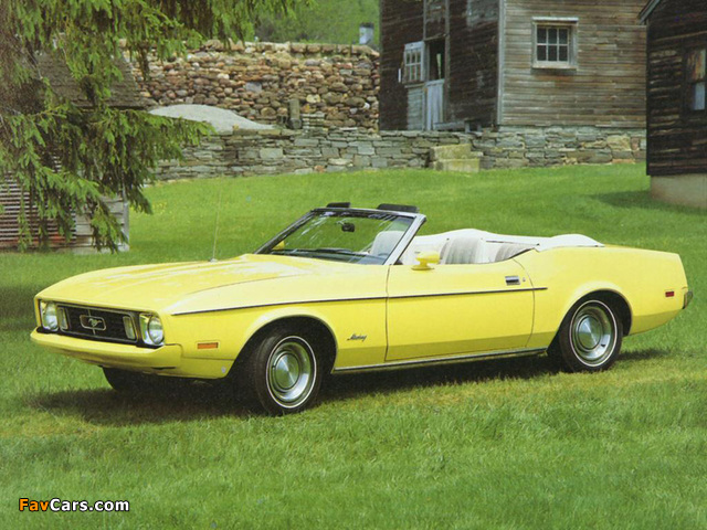 Mustang Convertible 1973 pictures (640 x 480)
