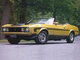 Mustang Convertible 1973 wallpapers