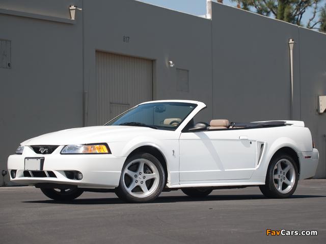 Mustang SVT Cobra Convertible 1999–2002 photos (640 x 480)