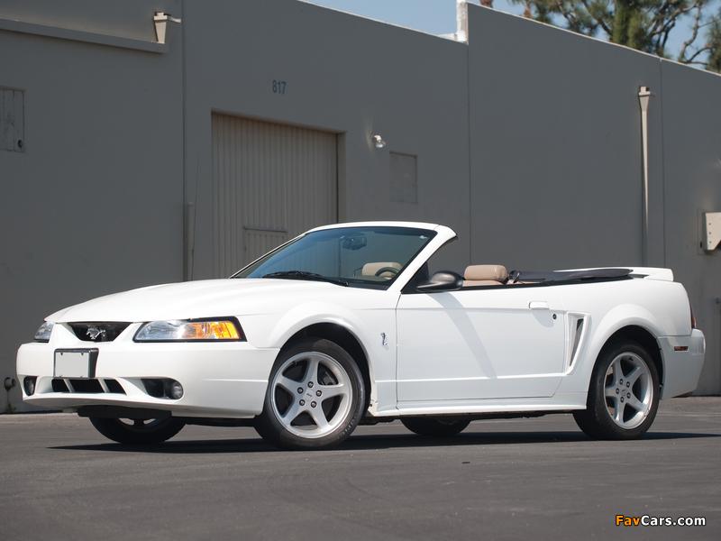 Mustang SVT Cobra Convertible 1999–2002 photos (800 x 600)