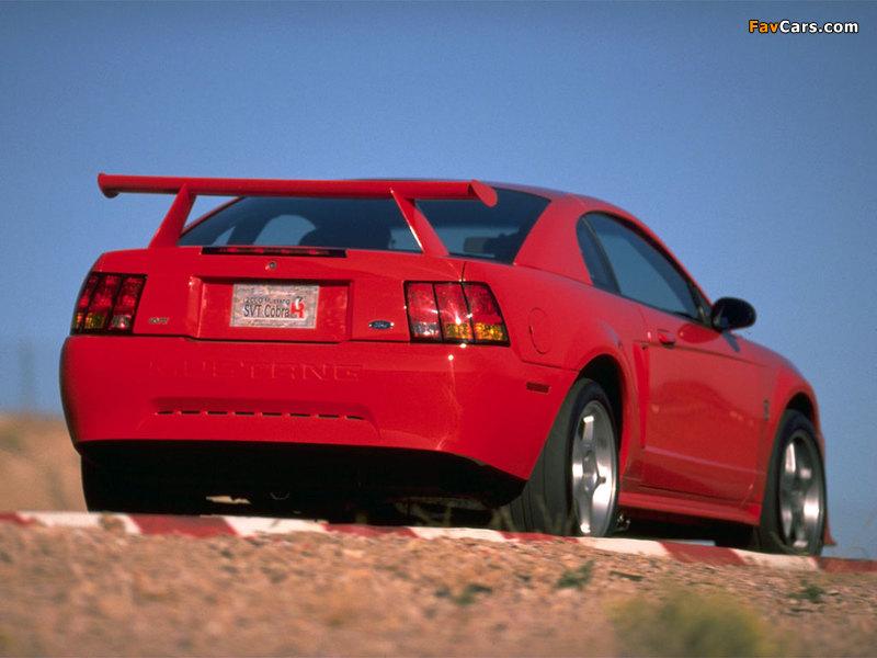 Mustang SVT Cobra R 2000–04 wallpapers (800 x 600)