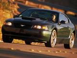 Mustang Bullitt GT 2001 pictures