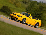 Mustang SVT Cobra Convertible 2004–05 photos