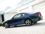 Mustang SVT Cobra Mystichrome 2004 photos