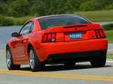 Mustang SVT Cobra Coupe 2004–05 pictures