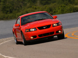 Mustang SVT Cobra Coupe 2004–05 wallpapers
