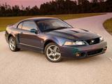 Mustang SVT Cobra Mystichrome 2004 wallpapers