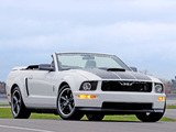 Ford Project Mustang GT Convertible 2006 images