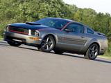 Mustang AV8R 2008 photos
