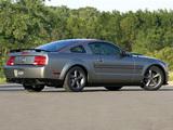 Mustang AV8R 2008 pictures
