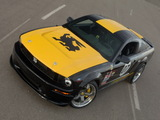 Shelby GT500 Bullrun Challenge 2008 wallpapers