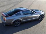 Mustang AV8R 2008 wallpapers