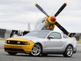 Mustang AV-X10 Dearborn Doll 2009 images