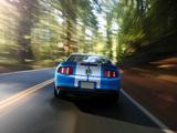 Shelby GT500 2009–10 photos