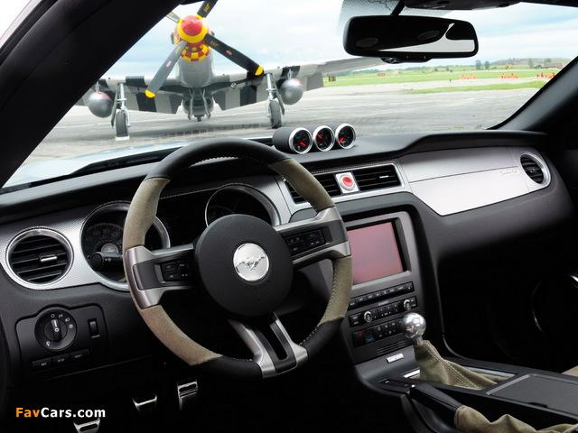 Mustang AV-X10 Dearborn Doll 2009 photos (640 x 480)