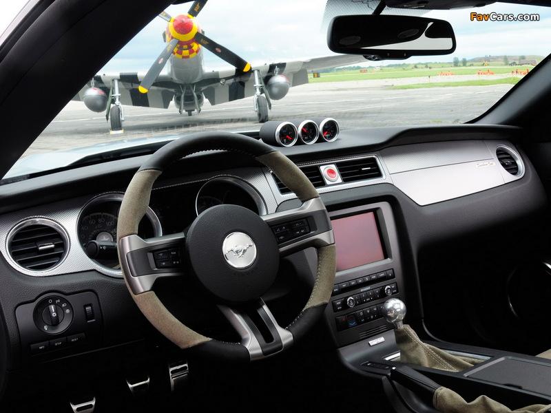 Mustang AV-X10 Dearborn Doll 2009 photos (800 x 600)