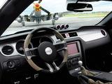 Mustang AV-X10 Dearborn Doll 2009 photos