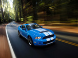 Shelby GT500 2009–10 pictures