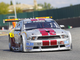 Mustang GT3 2010 images