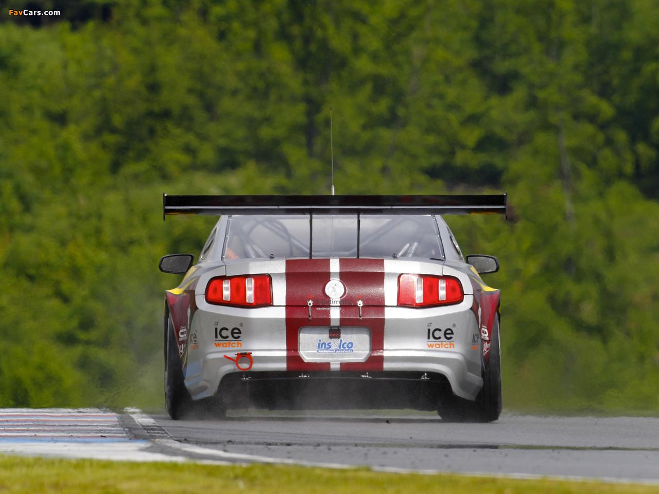Mustang GT3 2010 photos (1280 x 960)