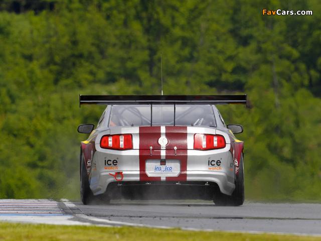 Mustang GT3 2010 photos (640 x 480)