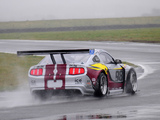 Mustang GT3 2010 pictures