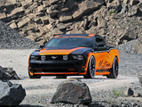 Mustang Coupe by Design-World Marko Mennekes 2011 pictures