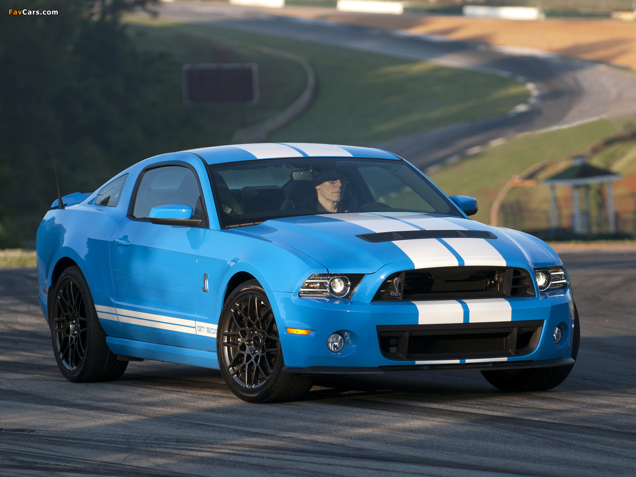 Shelby Gt500 Svt 2012 Pictures 1280x960