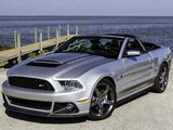 Roush Stage 1 Convertible 2013 pictures