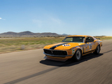 Images of Ford Mustang Boss 302 Trans-Am Race Car 1970