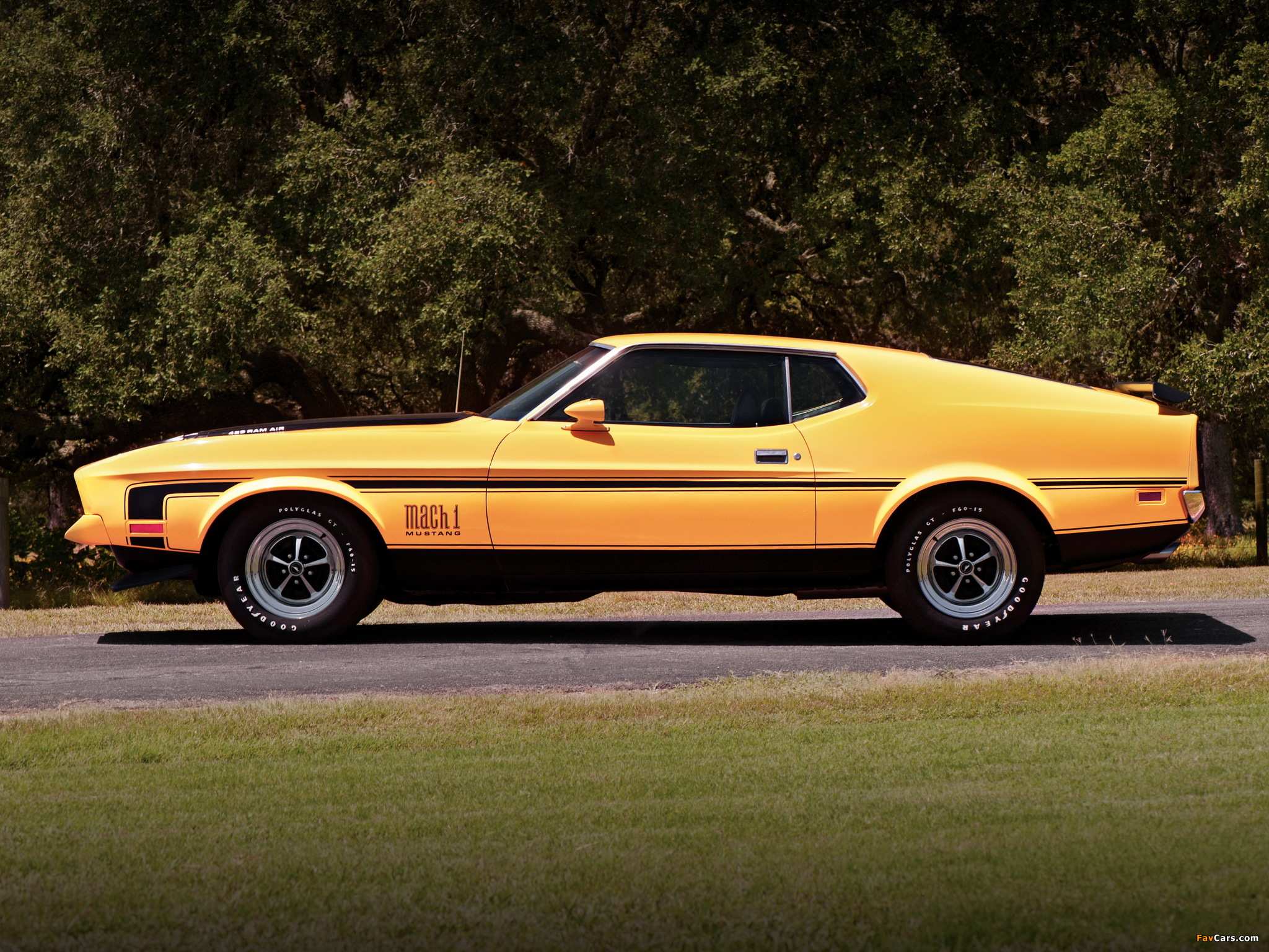 Images Of Mustang Mach 1 1971 72 2048x1536