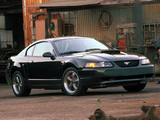 Images of Mustang Bullitt GT 2001